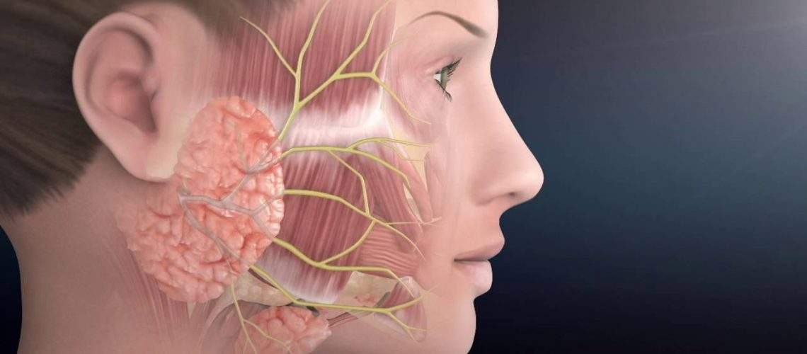Know one facial paralysis institute rather valuable